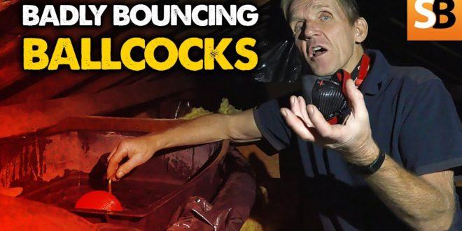 badly bouncing ballcocks whats that noise youtube thumbnail