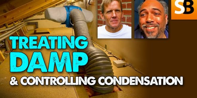 dealing with damp and condensation youtube thumbnail